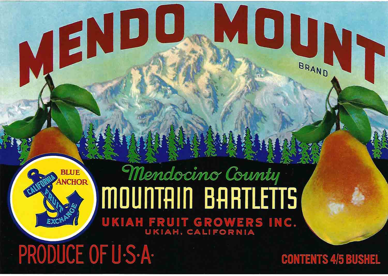 Mendo Mount Brand, Original Crate Label, Circa 1960's, 11x7.5