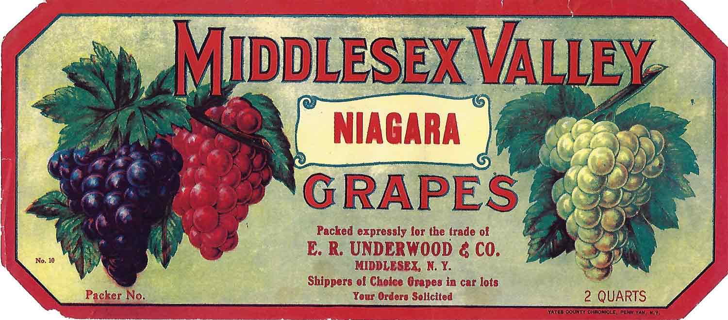 Middlesex Valley Brand, Original Crate Label, Circa 1930's, 10.5x4.75