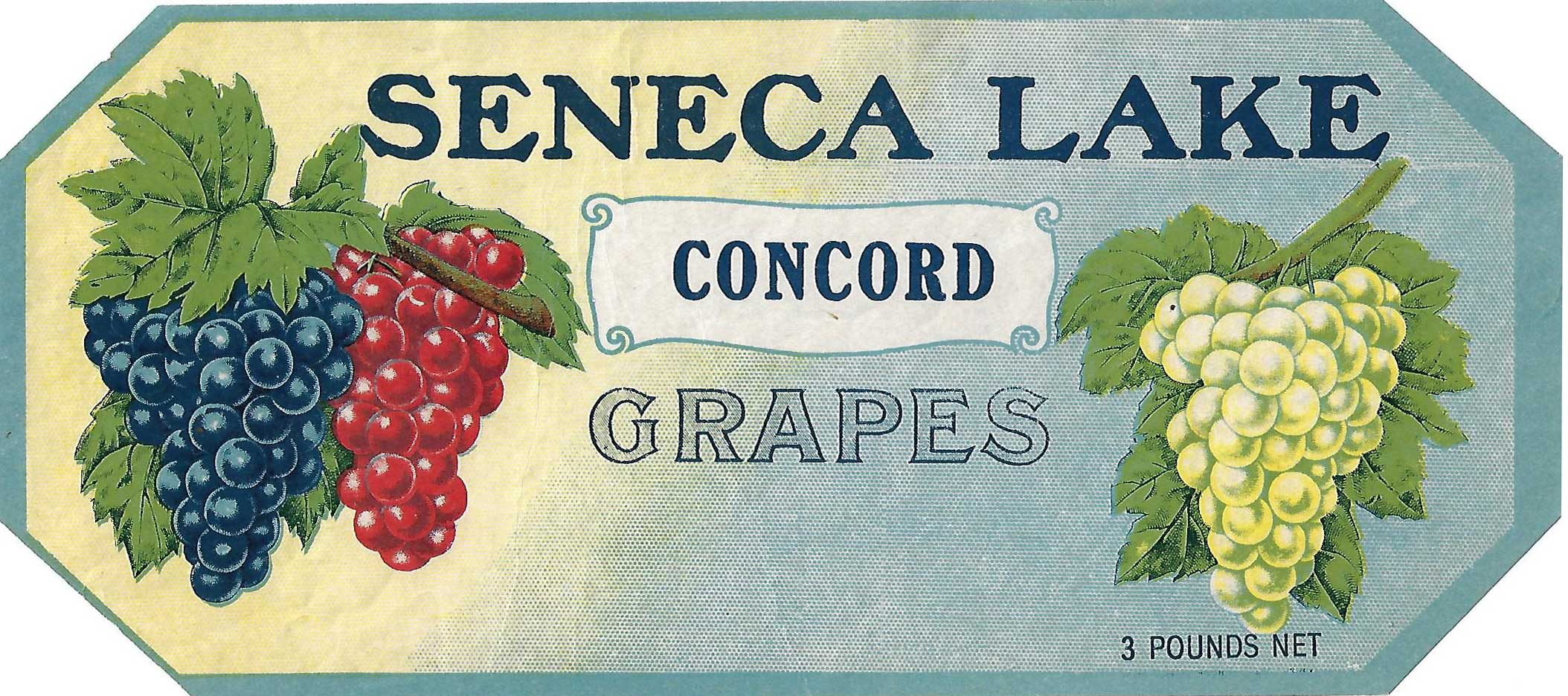 Seneca Lake Brand, Original Concord Grape Crate Label, Circa 1920's, 10.5 x 4.25