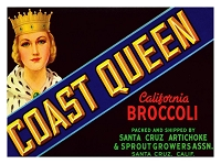 Coast Queen Original Crate Label , Circa 1940's, 7x4.5