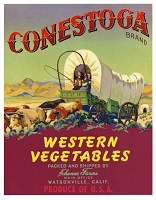Conestoga Brand Western Vegetables, Original Crate Label, Circa 1940's, 9x7
