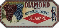 Diamond Brand Grapes, Original Crate Label, Circa 1920's, Stone Lithograph 10.5x5.25
