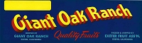 Giant Oak Ranch Brand, Original Crate Label, Circa 1940's, 13x4