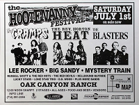 Hootenanny Festival, July 1st 1995, Poster, 17.5 x 23 , Guaranteed Original!