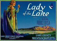 Lady of the Lake Brand, Original Crate Label, Circa 1950's, 10.5x7.75