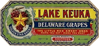 Lake Keuka Brand, Original Crate Label, Circa 1920's, 10.5x5