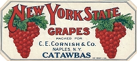 New York State Brand, Original Crate Label, Circa 1920's, 10.25x4.25