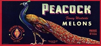Peacock Brand, Original Crate Label, Circa 1950's, 13.5 x 6.25