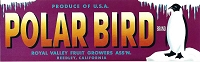 Polar Bird Brand, Original Crate Label, Circa 1950's, 13.00x4.0