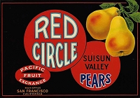 Red Circle Brand, Original Pear Crate Label, Circa 1930's, 10.75 x 7.50