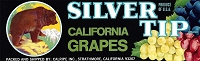 Silver Tip Brand, Original Grape Crate Label, Circa 1950's, 13.00 x 4.00