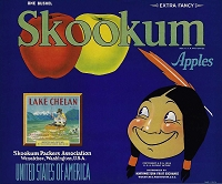 Skookum Ranch Brand, Original Apple Crate Label, Circa 1940's, 10.5 x 8.75