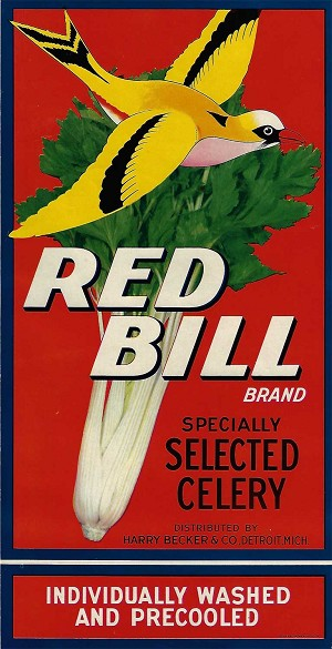 Red Bell Brand, Original Celery Crate Label, Circa 1930's, 13.25 x 6.25